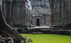 Read more Cambodia Econom (2 days, 1 night)