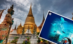 Read more Magic Bangkok Oceanarium