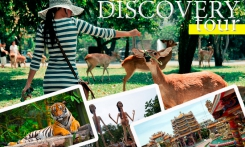 Read more Discovery tour 8in1 per day