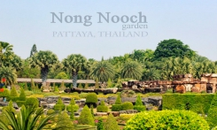 Read more Nong Nooch Tropical Garden day