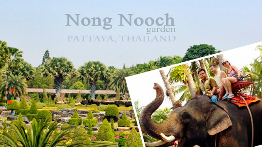 Evening Nong Nooch dinner Pattaya Park